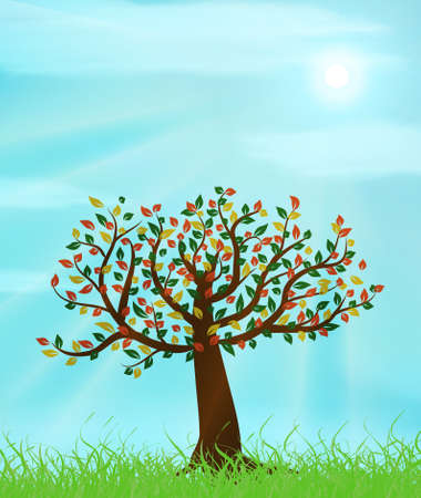 Summer landscape with old tree and blue sunny sky vector illustration Vector