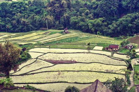 yuanyang: Beautiful rice terraces and some workers at field Stock Photo