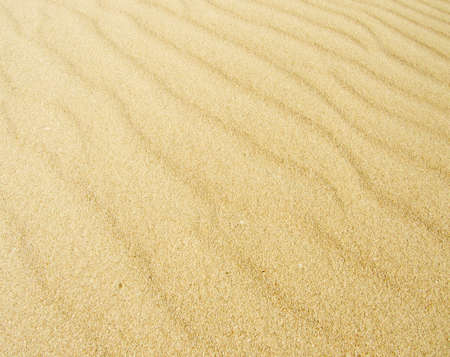 gobi desert: beautiful sand background - with wind lines