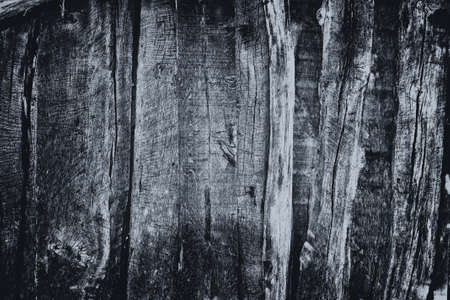 grunge black wood wall texture and background Stock Photo - 13274853