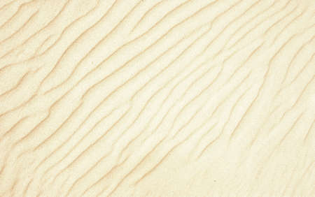 beautiful sand background - with wind lines photo