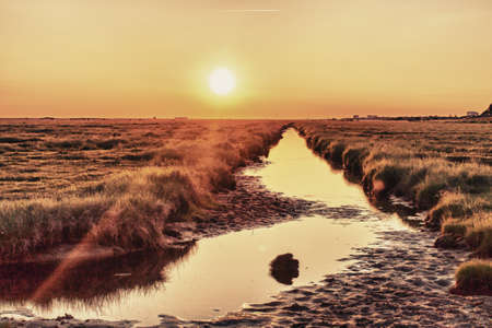 wadden: Wadden Sea - Germany St  Peter Ording