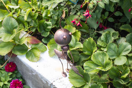 antrey: worker ant in the garden, funy picture Stock Photo