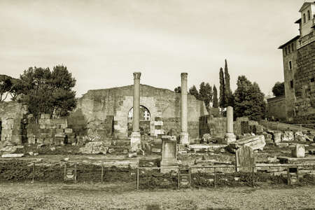 severus: View over the ruins of the Roman Forum, Rome, Italy