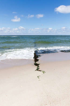 groyne: Rotten groin at the beach of Sylt island, Germany