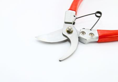 Pruning shears isolated on white background Stock Photo