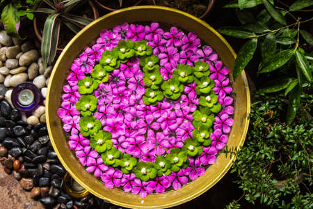 Flowers are beautifully decorated and arranged in the pot