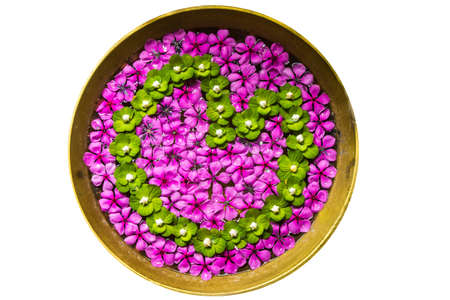 Isolated flowers are decorated and arranged in the pot