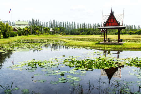 Thailand pavilion beside a lotus pond Stock Photo