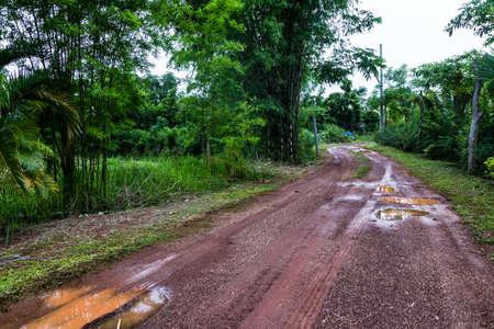 Dirt track through farm in Thailand