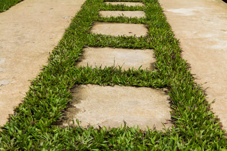 Stone pathway Stock Photo
