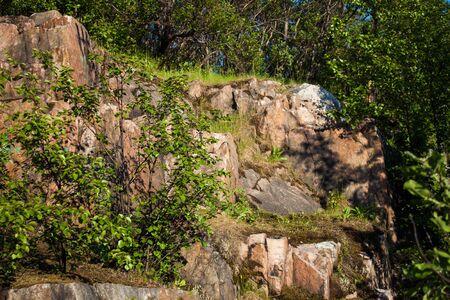 bright summer sun illuminates the stone rock and birch Stock Photo - 14333969