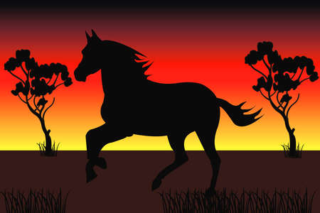 the silhouette of the fastest horse in front of the sunset
