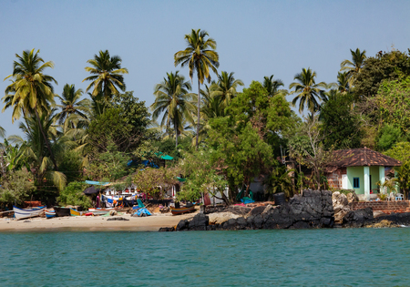 Coastline in Goa with seawater palms and houses