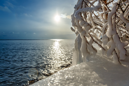 Branches of a tree covered with ice at Baikal lake