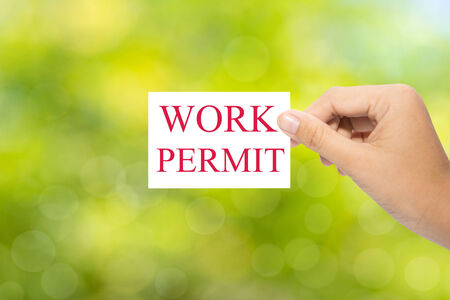 immigrate: Hand holding a paper WORK PERMIT on green background