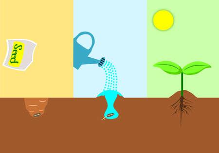 baum pflanzen: Pflanzung Baum