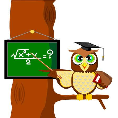 buho graduacion: B�ho Vectores