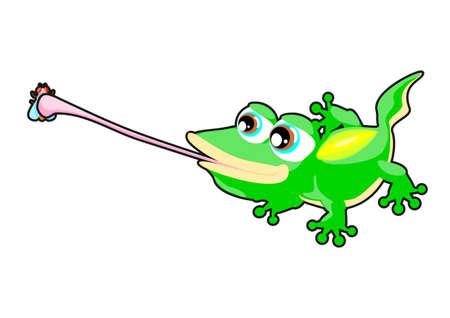 long tongue: Gecko