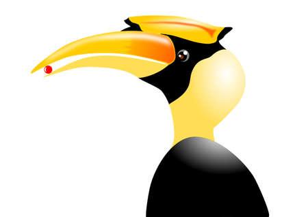 Great Hornbill Stock Vector - 18302345