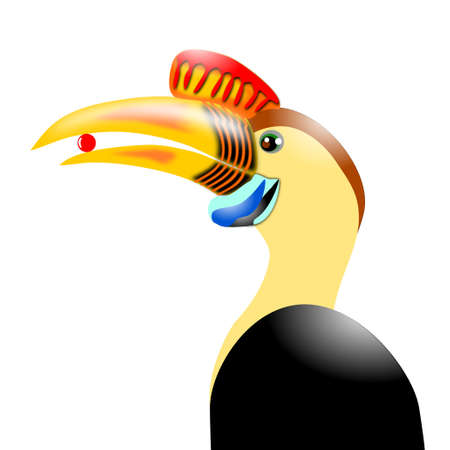 hornbill: Knobbed Hornbill Illustration