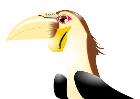 Wreathed Hornbill Stock Vector - 18302333