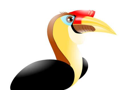 주름진 코뿔새 류