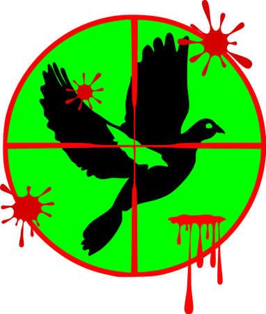 Target on pigeon