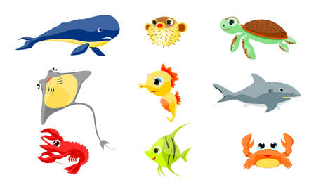 blowfish: Sea animals Illustration