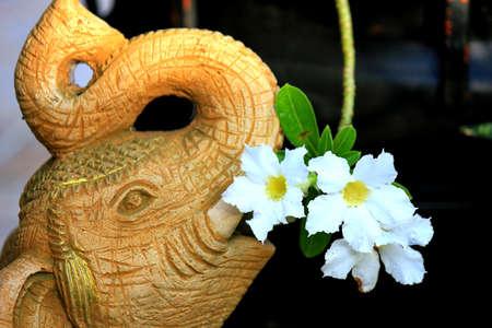 Elephant Statue with White Desert Rose (Adenium Obesum, Impala Lilly, Mock Azalea) Stock Photo