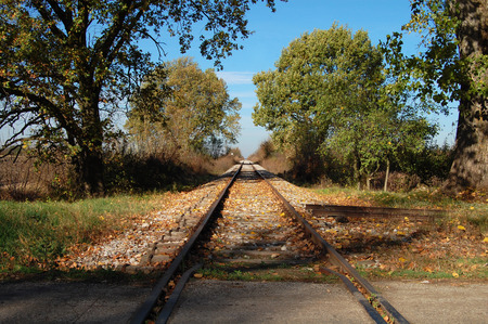 One of closed railway lines in Banat in Serbia, where traffic was discontinued. The sad picture of a time gone by and life. The railway runs from Vrsac to Zrenjanin and photographed in a place which is called Stari Lec in October 11, 2013th Redakční