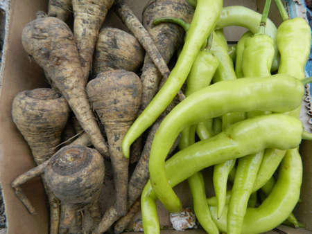 parsnip: Offer green hot pepper and parsnip at the local market.