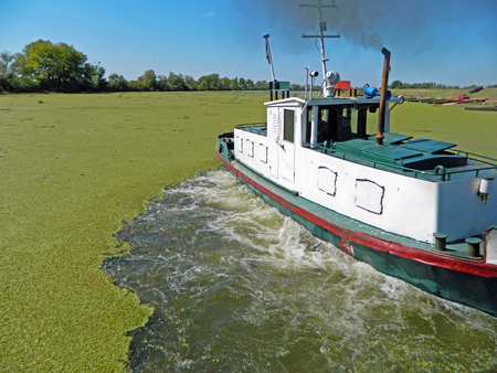 stock photos: The moment when the tugboat pulls ferry in water that is covered in grass.