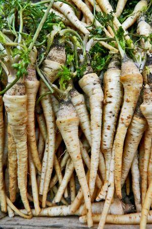 parsnip: Parsnip on market