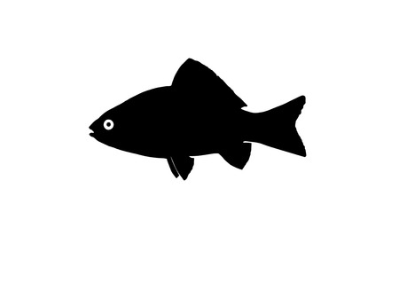 crucian: Silhouette fish called Babushka who came from Asian waters in European waters.