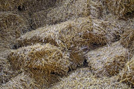 animal feed: Rural barn full of straw for animal feed.