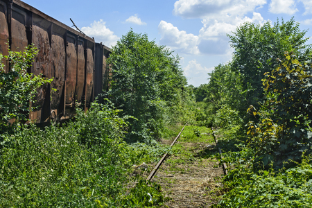 Old railway wagons on the railway track in the weeds, bushes and grass. Stock Photo