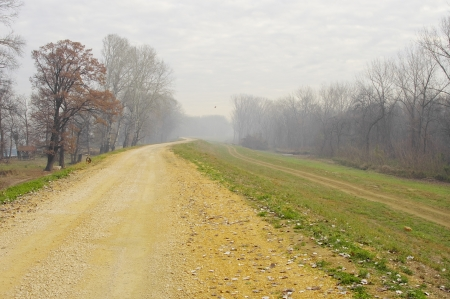 Walking along the winding country road in late autumn Stock Photo