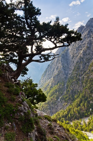 On the top of Samaria gorge, central part of Crete island photo
