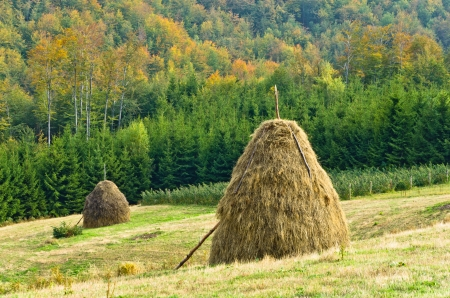 serbia landscape: Viewpoint on a landscape of mount Bobija, hills, haystacks, meadows and colorfull trees, west Serbia