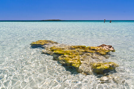 Amazing beauty of shallow crystal clear waters at Elafonisi beach, island of Crete, Greece photo