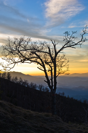 serbia landscape: Mountain landscape in early spring at sunset, mount Stolovi, Serbia Stock Photo