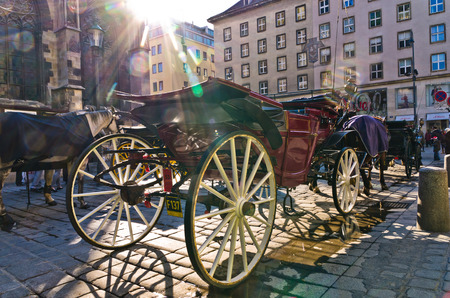 saint stephen cathedral: Horse carriage in front of saint Stephen s cathedral at downtown of Vienna, Austria Stock Photo