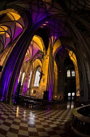saint stephen cathedral: Super wide view inside of illuminated saint Stephen s cathedral at downtown of Vienna, Austria