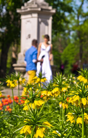 Wedding photo session at Stadtpark, downtown of Vienna, Austria photo