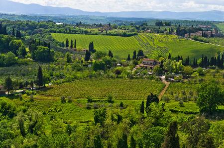 Hills, vineyards and cypress trees, Tuscany landscape near San Gimignano, Italy photo