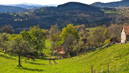 Mountain farm and landscape at autumn sunny day, Radocelo mountain, central Serbia photo