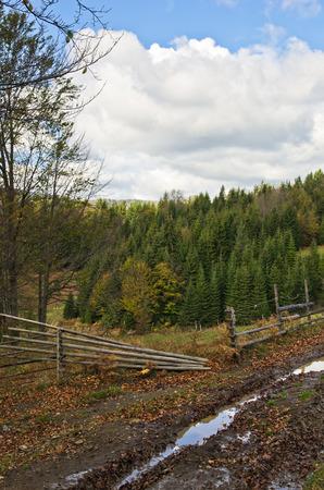 Fence along mountain road at autumn, Radocelo mountain, central Serbia photo