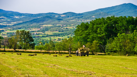 serbia landscape: Agricultural fields and landscape near Zlot mountain at east Serbia