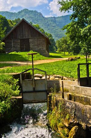 tara: Landscape at Tara mountain and national park, west Serbia